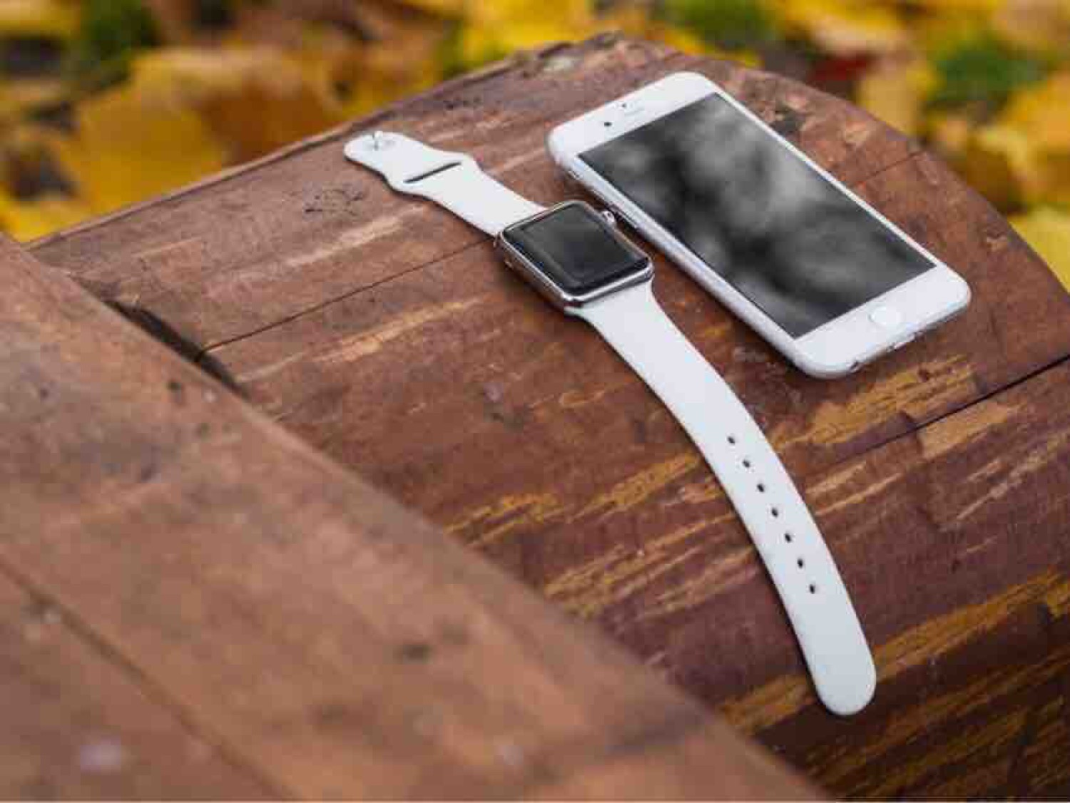 Article image for The Sensible Apple Watch Choice